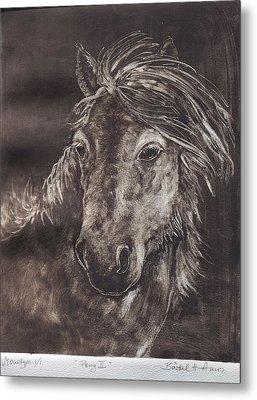 Pony II Metal Print by Barbel Amos