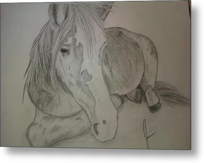Pony Metal Print by Jamie Mah