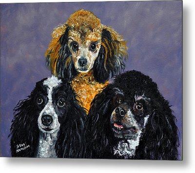 Poodles Metal Print by Stan Hamilton
