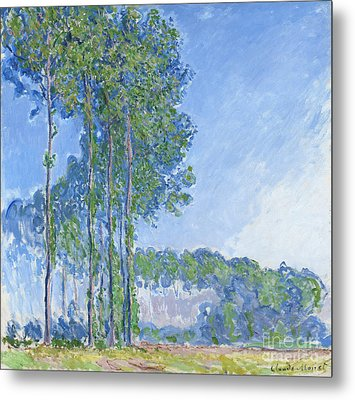 Poplars Metal Print by Claude Monet
