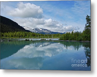 Portage Valley Metal Print