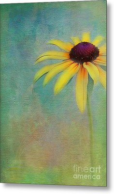 Portrait Of A Sunflower Metal Print by Judi Bagwell