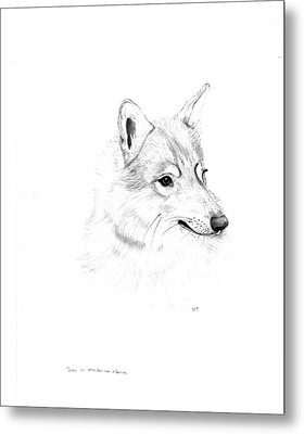 Portrait Of A Wolf Metal Print by Peter Edward Green