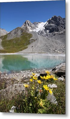 Postcard From Alpes Metal Print by Mircea Costina Photography