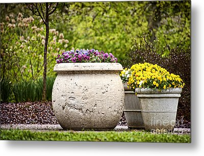 Metal Print featuring the photograph Pots Of Pansies by Cheryl Davis