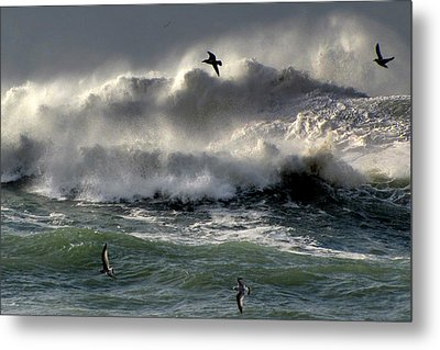 Metal Print featuring the photograph Power by Barbara Walsh