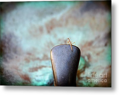 Praying For Water 2 Metal Print by Andee Design