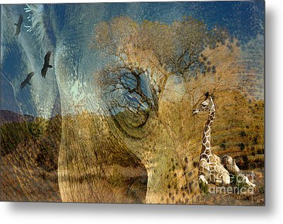 Metal Print featuring the photograph Preservation by Vicki Pelham