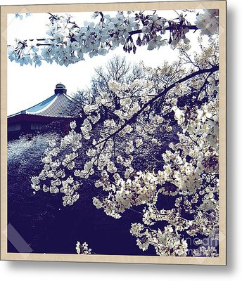 Pretty In Purples Metal Print by Holley Jacobs