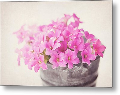 Pretty Pink Metal Print by SKCPhotography