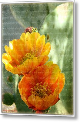 Prickly Pear Blooms Metal Print