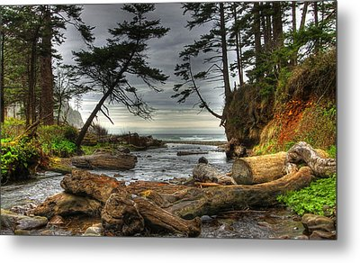 Primal Creek Metal Print