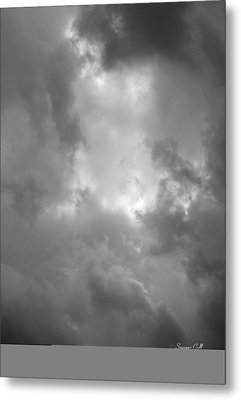 Primordial In Black And White Metal Print by Suzanne Gaff