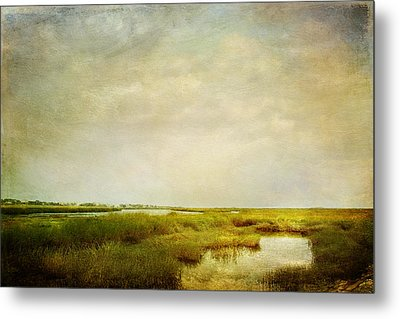 Metal Print featuring the photograph Promise Of Twilight by Karen Lynch