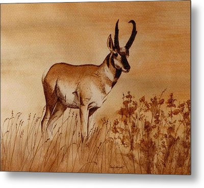 Metal Print featuring the painting Pronghorn Antelope by Cindy Wright