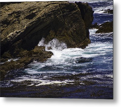 Protected From The Sea Metal Print by Jo-Anne Gazo-McKim