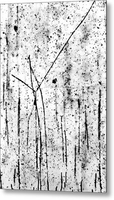 Proton/proton Collision In Photo Emulsion Metal Print by C. Powell, P. Fowler & D. Perkins