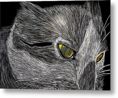 Prowl Metal Print by Lisa Brandel