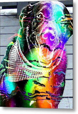 Psychedelic Black Lab With Kerchief Metal Print by Barbara Griffin