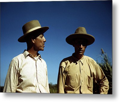 Puerto Rico. Sugar Cane Workers Metal Print by Everett