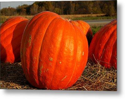 Pumpkin Hay Ride Metal Print