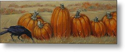 Pumpkin Row Metal Print by Linda Eades Blackburn