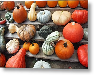 Metal Print featuring the photograph Pumpkins And Gourds by Brooke T Ryan