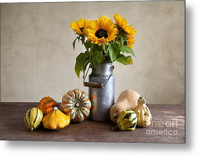 Pumpkins And Sunflowers Metal Print by Nailia Schwarz