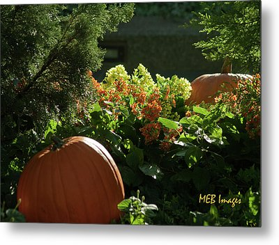 Pumpkins In Autumn Metal Print by Margaret Buchanan