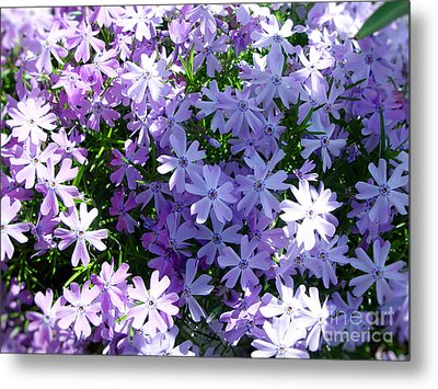 Purple Bed Metal Print