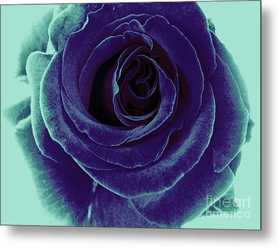 Metal Print featuring the photograph Purple Rose by Jasna Gopic