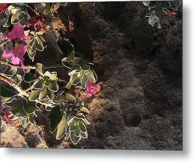 Metal Print featuring the photograph Purple Sage And Desert Rock In Morning Light by Louis Nugent