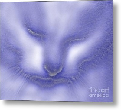 Digital Puss In Blue Metal Print by Linsey Williams