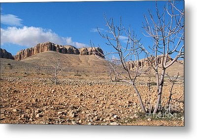 Qalamoun Mountains Metal Print