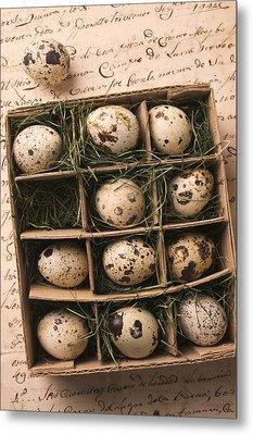 Quail Eggs In Box Metal Print by Garry Gay
