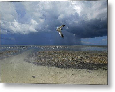 Rain Falls From A Huge Cloud Metal Print by Raul Touzon
