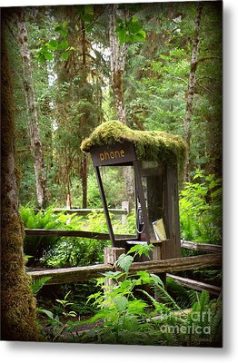 Rain Forest Telephone Booth Metal Print by Tanya  Searcy
