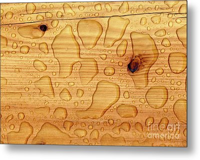 Metal Print featuring the photograph Rain On Wood by Charles Lupica
