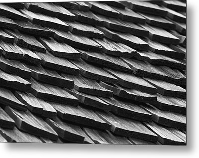 Rain Shield Metal Print by Nicholas Evans