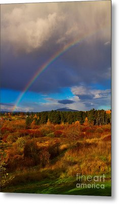 Rainbow Over Rithets Bog Metal Print by Louise Heusinkveld