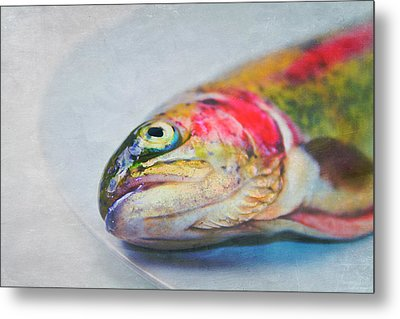 Rainbow Trout On Plate Metal Print by Image by Catherine MacBride