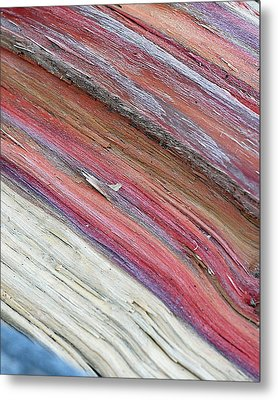 Metal Print featuring the photograph Rainbow Wood by Lisa Phillips