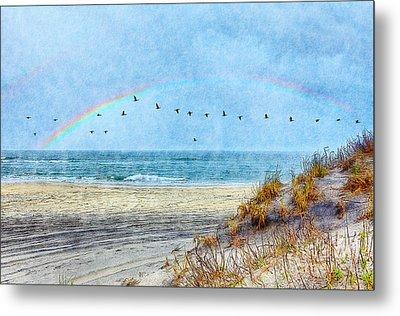Rainbows And Wings II Metal Print by Dan Carmichael