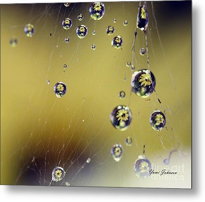 Raindrops On The Spider Web Metal Print by Yumi Johnson