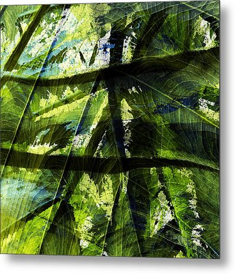 Rainforest Abstract Metal Print by Bonnie Bruno