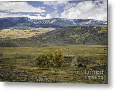 Ranch Land Metal Print by David Waldrop