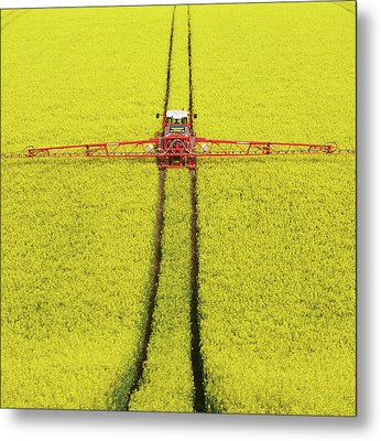 Rape Seed Spraying Metal Print by JT images