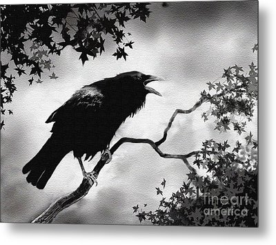Raven's Song Metal Print by Robert Foster