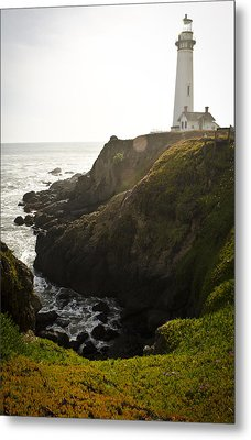 Ray Of Light Metal Print by Heather Applegate
