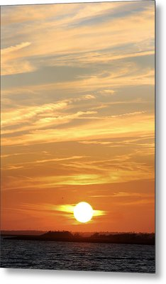 Reach For The Sky 6 Metal Print by Mike McGlothlen
